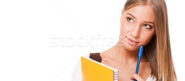 Szőke diák szépség portré gyönyörű fiatal Stock fotó © lithian