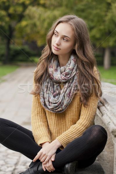 Automne mode beauté extérieur portrait brunette Photo stock © lithian