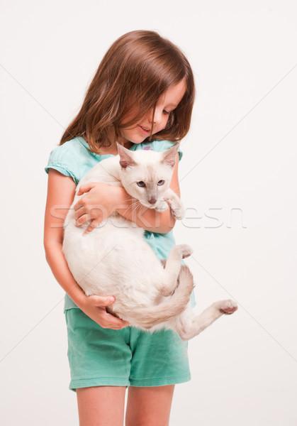 Gyönyörű fiatal lány tart macska portré sziámi macska Stock fotó © lithian