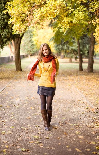 Spadek kolor harmonia modny przepiękny młodych Zdjęcia stock © lithian