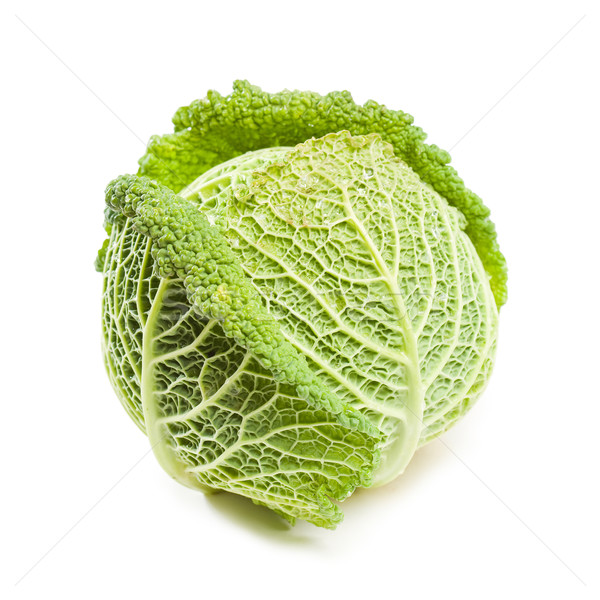 Appetizing fresh cabbage. Stock photo © lithian