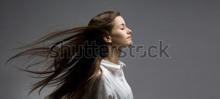 Barna hajú szépség haj portré fiatal álomszerű Stock fotó © lithian