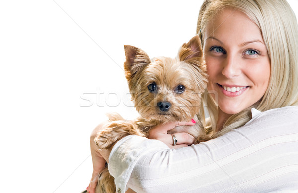 Beautiful young blond girl with cute yorkshire terrier. Stock photo © lithian