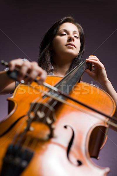 Klasyczny sztuki portret piękna młodych wiolonczelista Zdjęcia stock © lithian