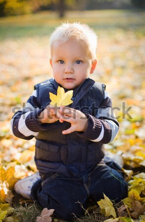 Cute young boy outdoors in nature. Stock photo © lithian