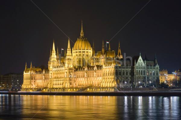 The Hungarian parliament lit up at night. Stock photo © lithian