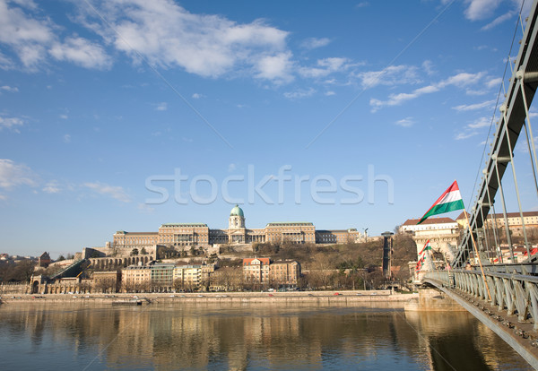 Historic building of Buda and the Chain Bridge. Stock photo © lithian
