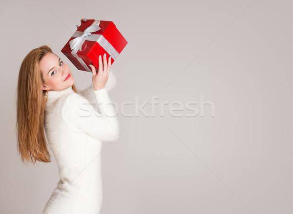 Karácsony cuki portré káprázatos fiatal nő tart Stock fotó © lithian