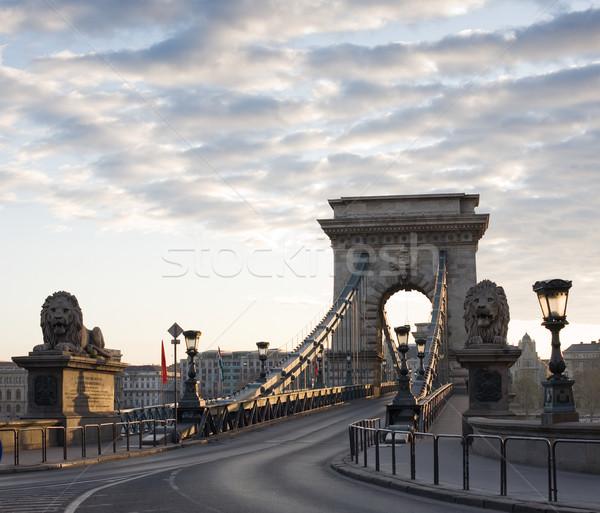 The Budapest Chain Bridge at dawn. Stock photo © lithian