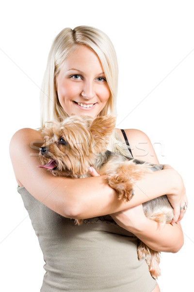Beautiful young blond holding cute yorkie dog. Stock photo © lithian