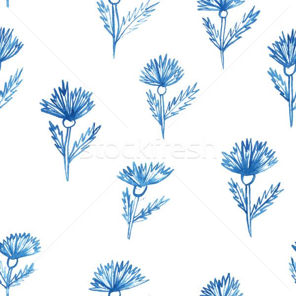 pattern, flowers, aquarelle cornflower Stock photo © LittleCuckoo
