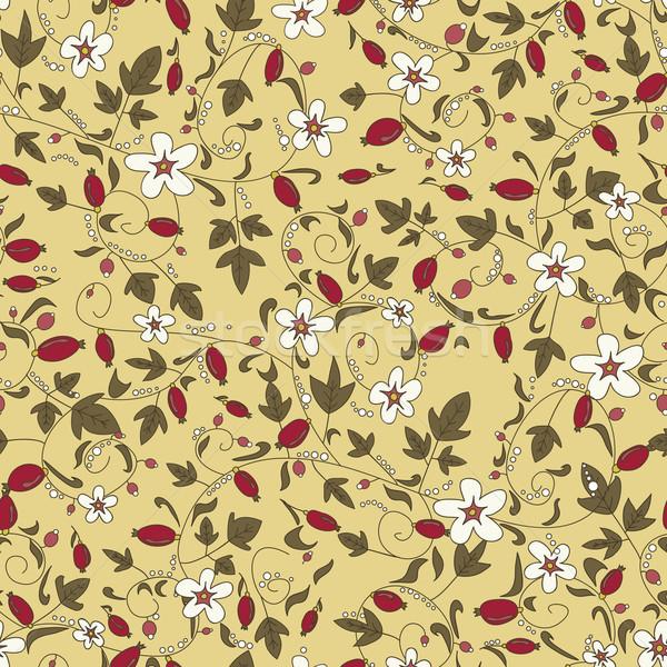 パターン シームレス フローラル テクスチャ 液果類 花 ストックフォト © LittleCuckoo