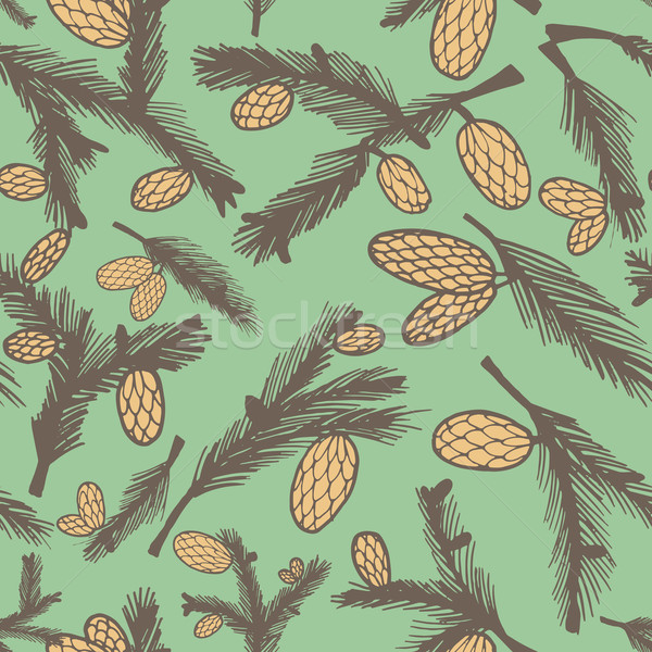 Fir pine cone seamless pattern Stock photo © LittleCuckoo