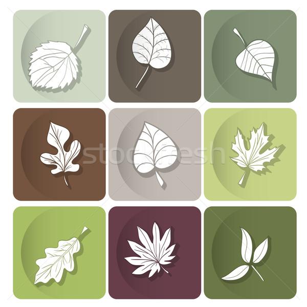 Bladeren icon witte silhouetten bos bomen Stockfoto © LittleCuckoo