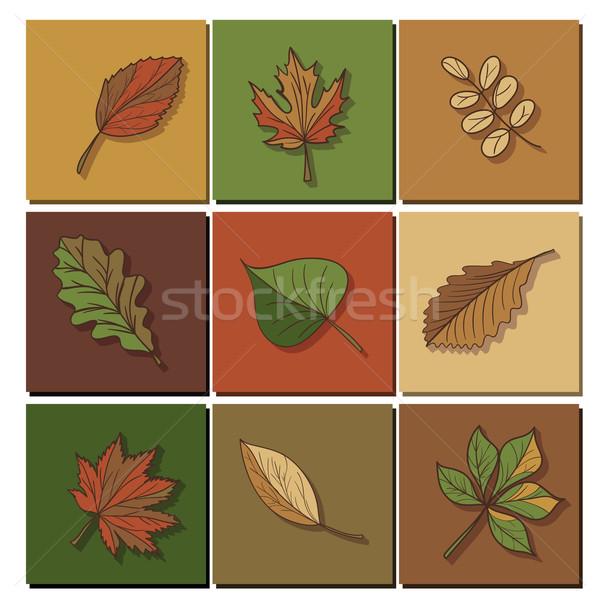 Bladeren icon groen blad bos boom Rood Stockfoto © LittleCuckoo