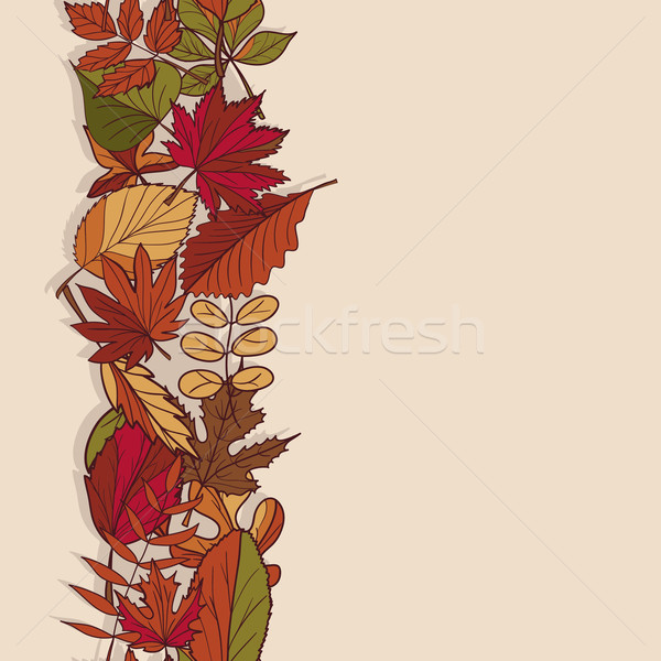 Autumn pattern. Pattern of autumn leaves. Red, yellow and green leaves of forest trees. Seamless Bor Stock photo © LittleCuckoo