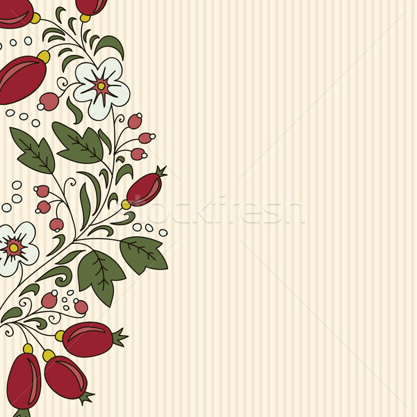 striped background barberry with white flower Stock photo © LittleCuckoo