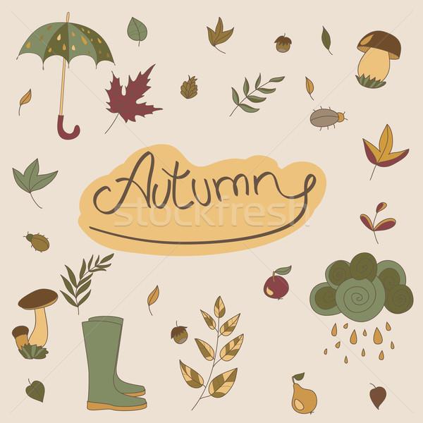 Autumn objects. Seasonal objects Stock photo © LittleCuckoo