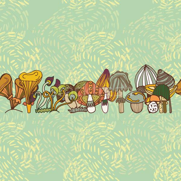 Naadloos vector grens verschillend champignons bos Stockfoto © LittleCuckoo