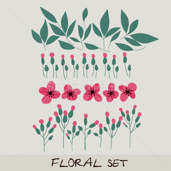 Vector ingesteld collectie bladeren bloemen Stockfoto © LittleCuckoo