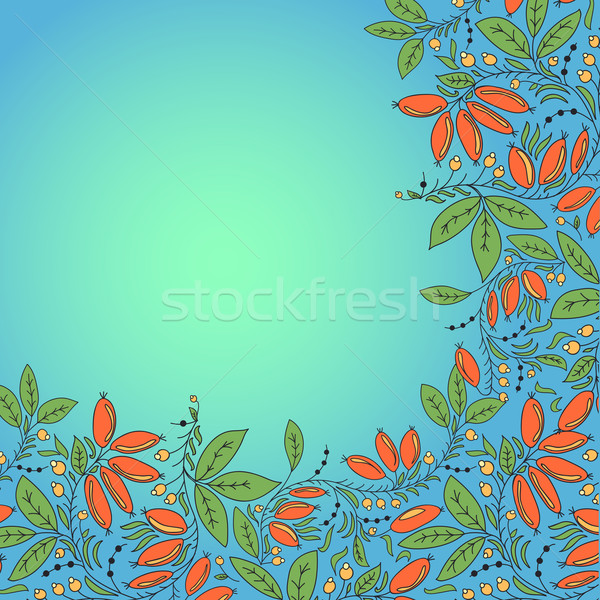 barberry berries card. place for text Stock photo © LittleCuckoo