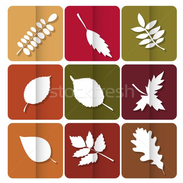 Icon Rood Geel groene bladeren bos Stockfoto © LittleCuckoo