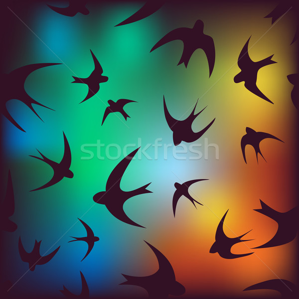 background with swallow Stock photo © LittleCuckoo