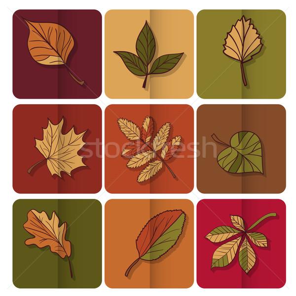 Icône rouge jaune feuilles vertes forêt Photo stock © LittleCuckoo