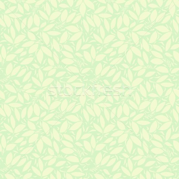 Neutro verde bege planta papel de parede floral Foto stock © LittleCuckoo