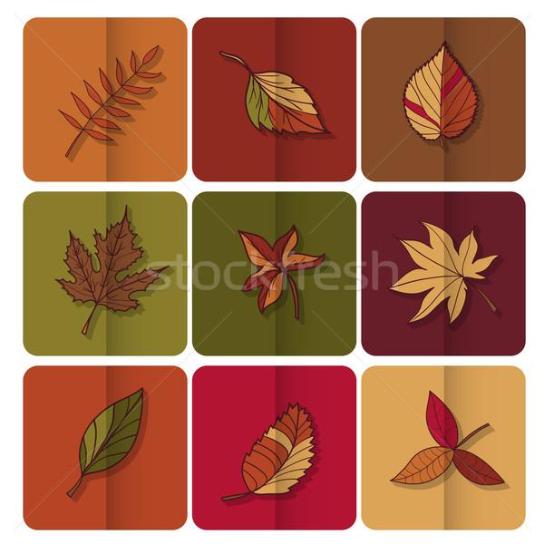 Sonbahar yaprakları ikon kırmızı sarı yeşil yaprakları orman Stok fotoğraf © LittleCuckoo
