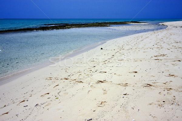 Plaj kumu kum banka Tanzanya su deniz Stok fotoğraf © lkpro