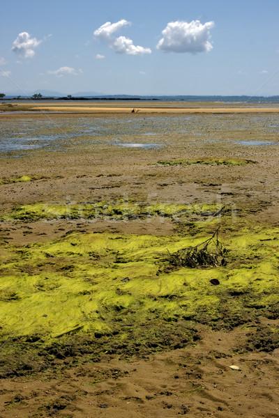 Nublado alga indiano oceano Madagáscar montanha Foto stock © lkpro