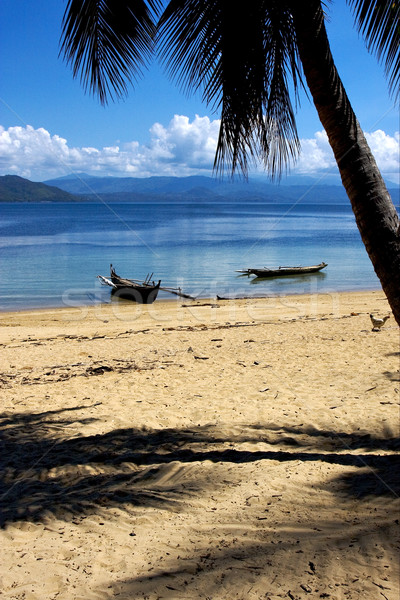 madagascar nosy be rock  palm branch boat and coastline Stock photo © lkpro