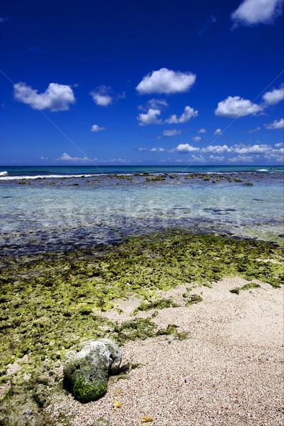 Plaj kaya taş su doğa deniz Stok fotoğraf © lkpro