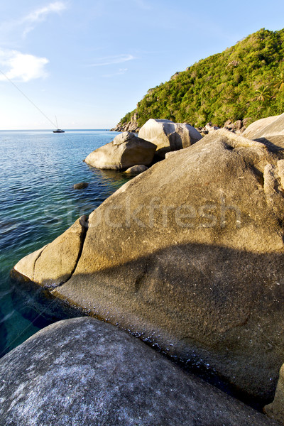 stone in thailand kho tao bay abstract of a blue lagoon    south Stock photo © lkpro