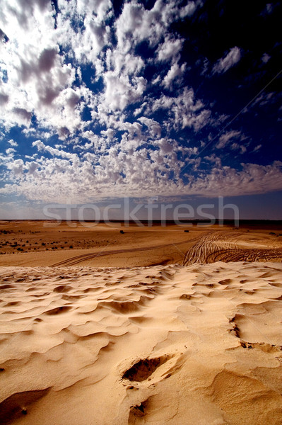 dune sahara Stock photo © lkpro