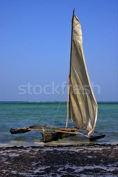 Plaj tekne Tanzanya su ahşap deniz Stok fotoğraf © lkpro