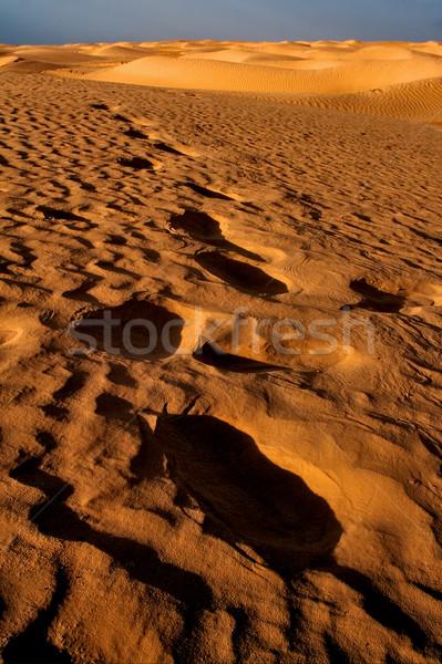 Sahara woestijn Tunesië duin zwarte alleen Stockfoto © lkpro