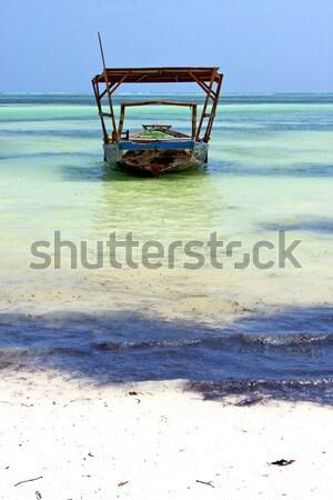Plaży wodorost łodzi Tanzania wody morza Zdjęcia stock © lkpro