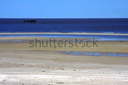 Plaj ahşap rio Uruguay çim Stok fotoğraf © lkpro