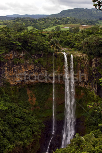 falls in the isle of mauritius Stock photo © lkpro