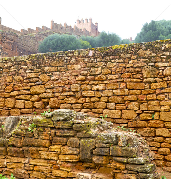 chellah  in morocco africa the old roman deteriorated monument a Stock photo © lkpro