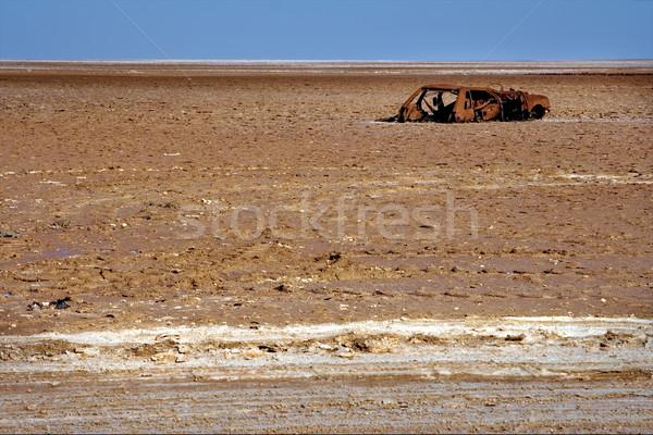 car roaring in chott el jarid Stock photo © lkpro