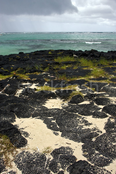 beach rock and stone in belle mare mauritius Stock photo © lkpro