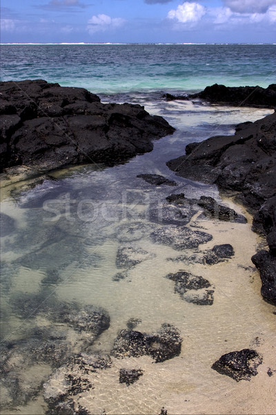 beach rock in  mauritius Stock photo © lkpro