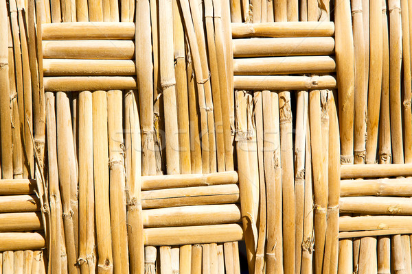 texture bamboo in morocco   Stock photo © lkpro