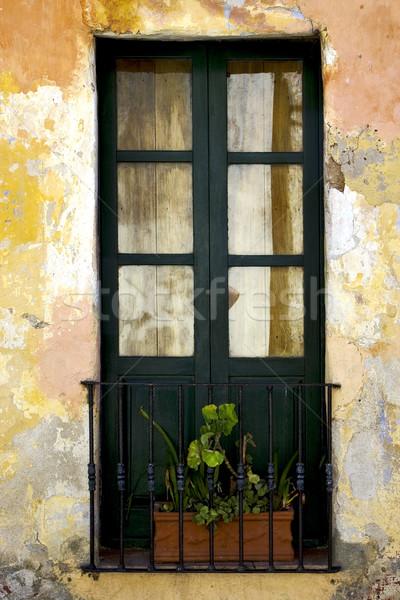 Yeşil eski pencere küçük çiçek merkez Stok fotoğraf © lkpro