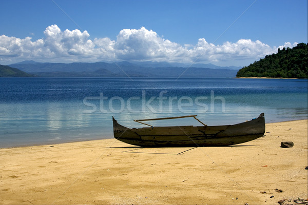boat palm  rock stone branch  lagoon  Stock photo © lkpro