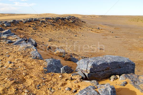 Bokor öreg kövület sivatag Marokkó Szahara Stock fotó © lkpro