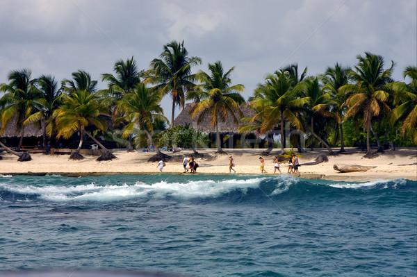 Cabine casa oceano palmeira praia Foto stock © lkpro